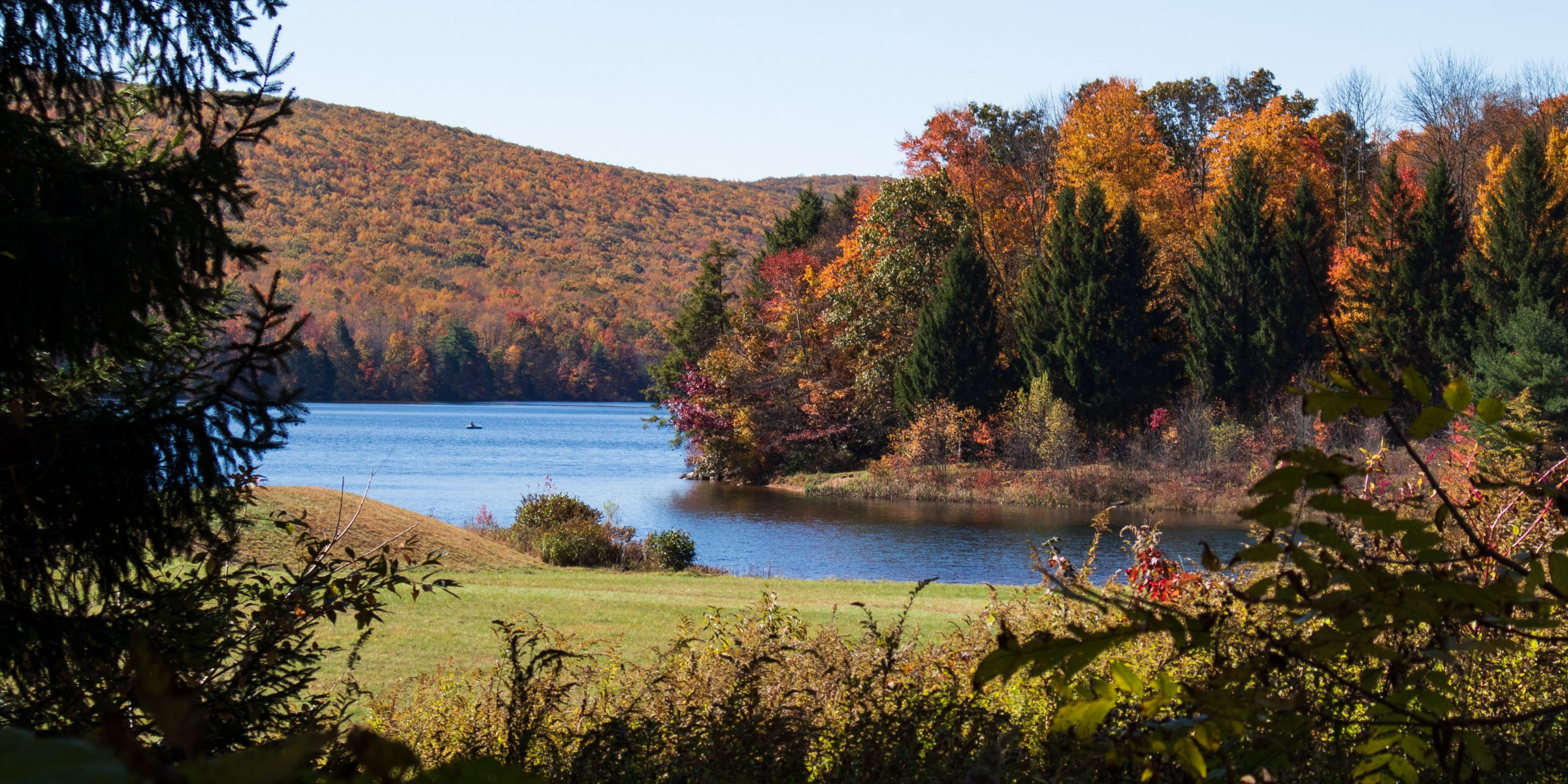Autumn Trees by a lake in rural Pennsylvania
